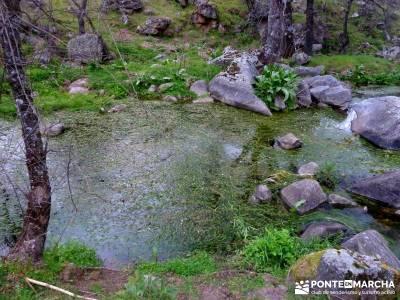 Molinos Río Perales; excursiones senderismo; viaje senderismo;videos de senderismo